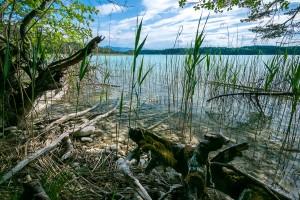 nature lakeside long weekend wri